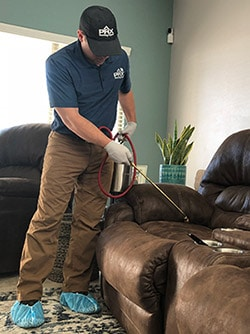 Scottsdale bed bug chemical treatment by Scottsdale Bed Bug Expert